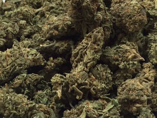 Cannabis delivery winnipeg Provides The Best Cannabis